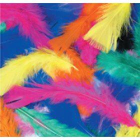 Multicolour Asstd Feathers 4g