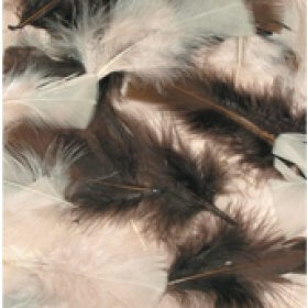 Natural Feathers 4g