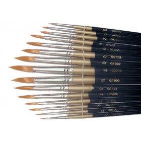 Golden Hair Brush Set of 15 Assorted Brushes